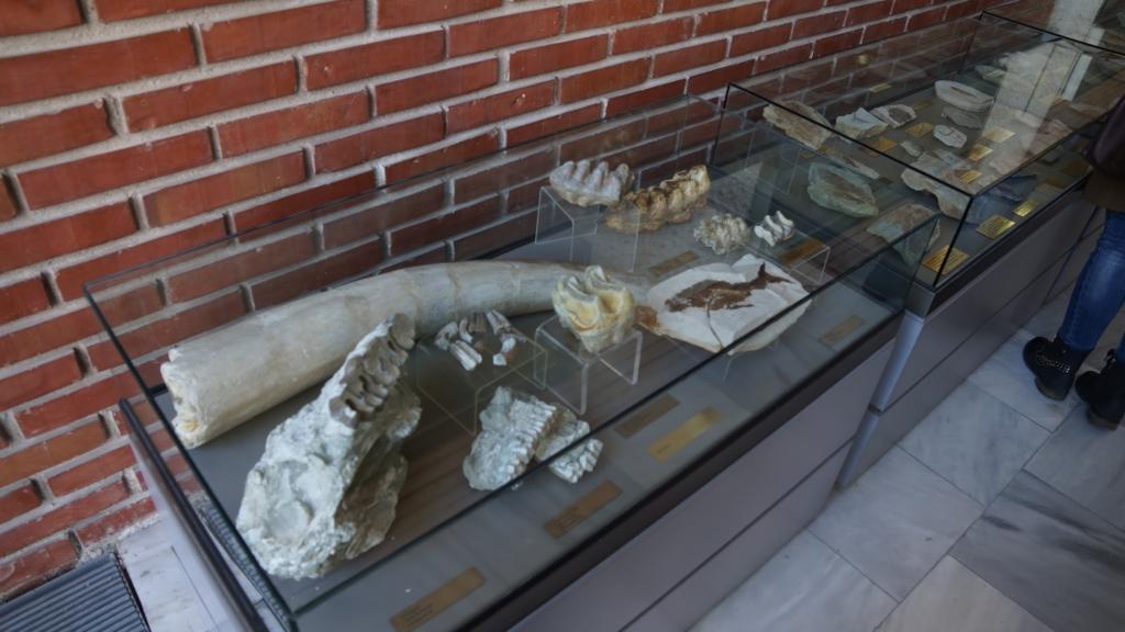 Regional Historical Museum - Blagoevgrad, Southwest Bulgaria