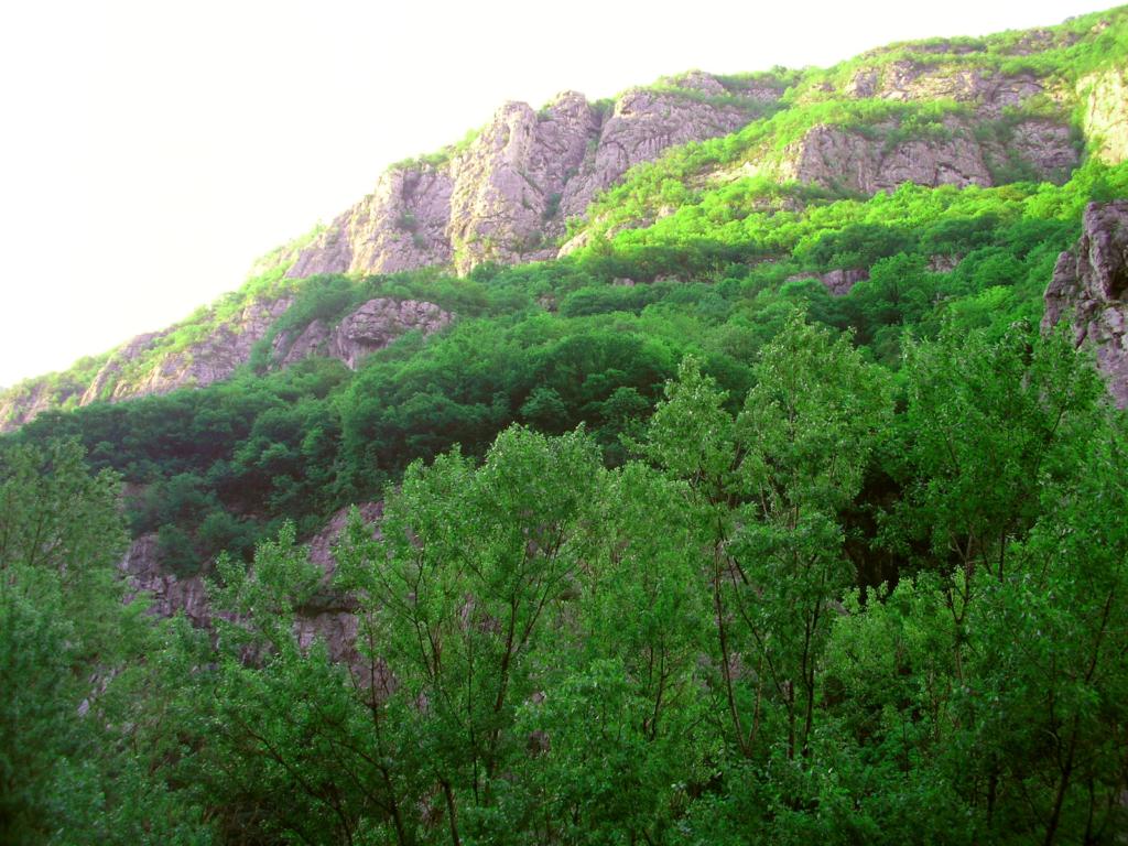 Sicevacka Gorge, Serbia