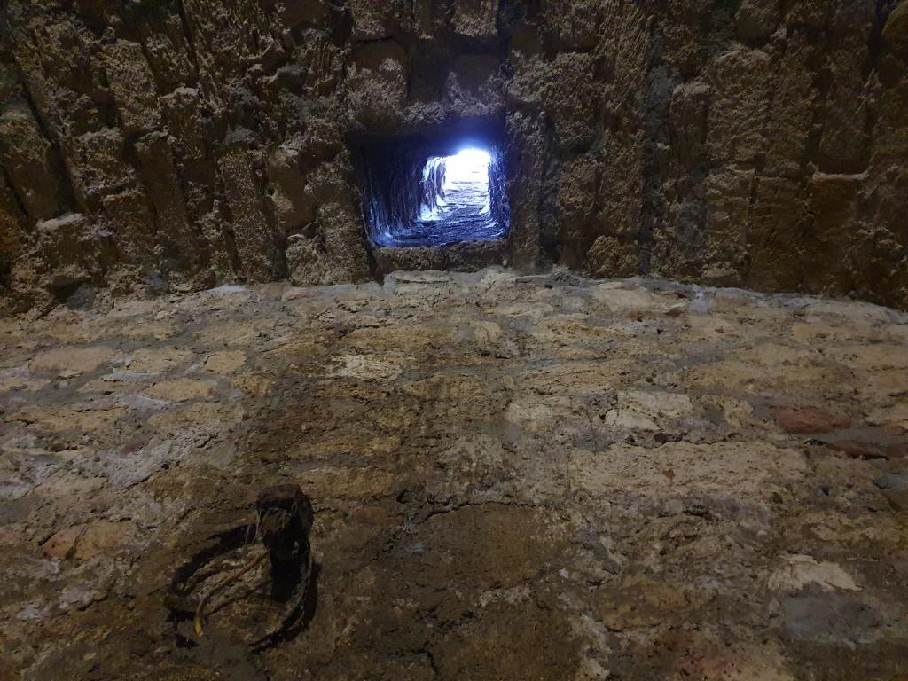 В крепостта на Баба Вида